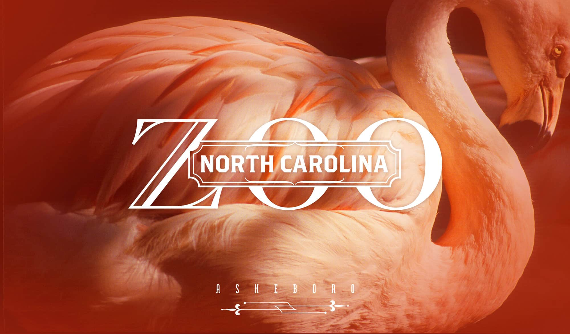 North Carolina Zoo