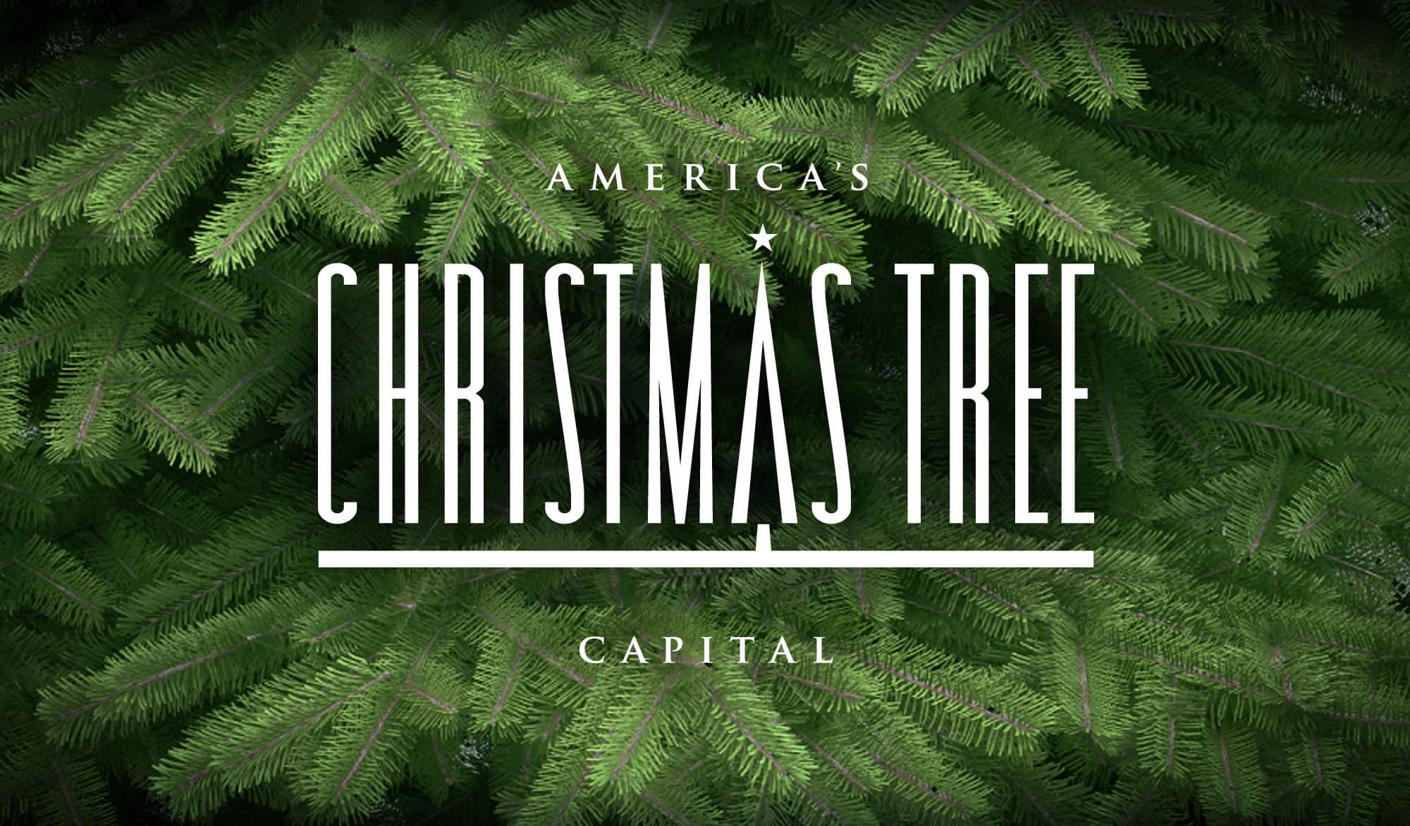 America's Christmas Tree Capital | Ashe County, N.C ...